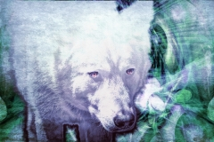 Through-Dream-Haze-My-Summoned-Wolf