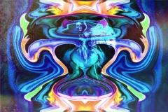 Transforming-Vision